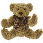 Teddy Bear Levin