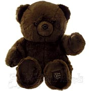 Large Dark Brown Teddy Bear