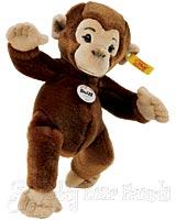 Very Little Koko Chimp