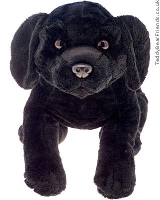 Asthma Friendly Black Dog