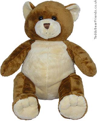 Asthma Friendly Brown Teddy Bear