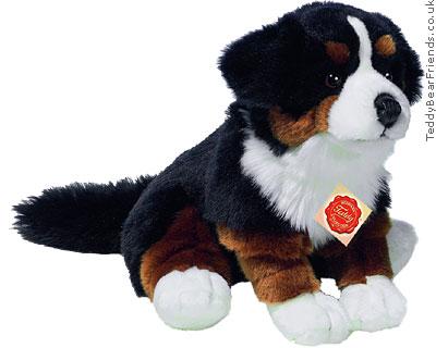 Teddy Hermann Bernese Mountain Dog Puppy
