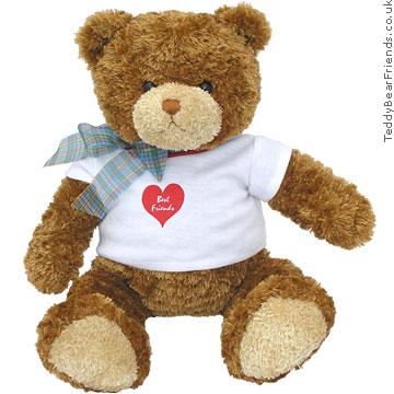 Teddy Bear Friends Best Friends Bear