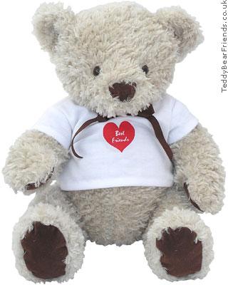 Teddy Bear Friends Best Friends Teddy Bear