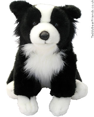 Teddy Hermann Border Collie Puppy