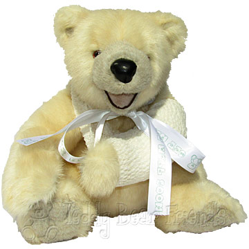 Broken Arm Teddy Bear