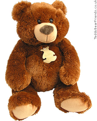 Histoire d'Ours Brown Bear