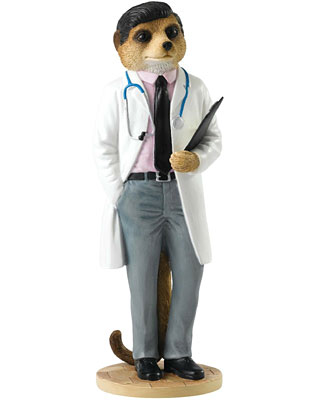 Country Artists Doctor Meerkat Figurine