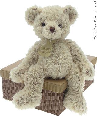 Histoire d'Ours Grey Shaggy Bear