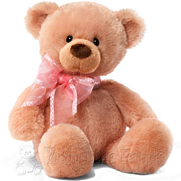 Gund I Love You Mummy Teddy Bear