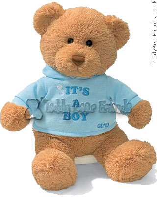 Baby Gund Its A Boy Bear