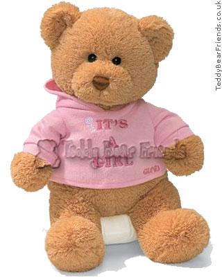 Baby Gund Its A Girl Teddy Bear