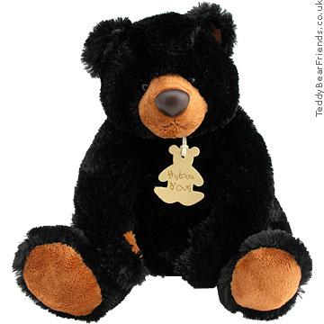Histoire d'Ours Little Black Bear