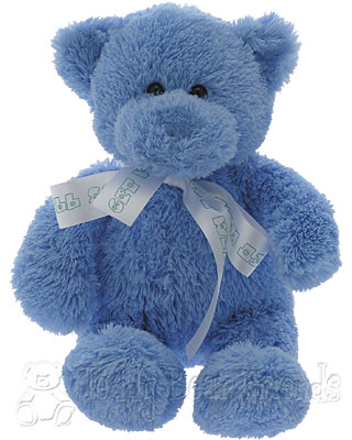 Teddy Bear Friends Exclusive Little Get Well Teddy Bear For A Boy