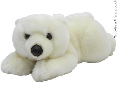 Histoire d'Ours Little Polar Bear