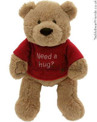 Gund Need a Hug Bear