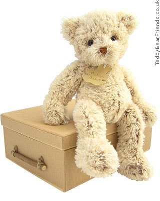Histoire d'Ours Scruffy Bear