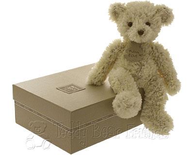 Histoire d'Ours Scruffy Teddy Bear