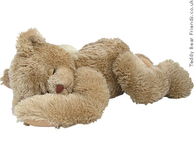 Trendle Snoozer Sleeping Teddy Bear