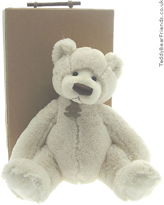 Histoire d'Ours Snuggle Bear