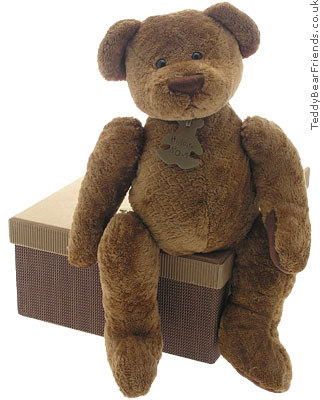 Histoire d'Ours Soft Brown Bear